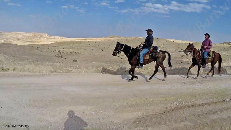 Sirin Riders 3.jpg
