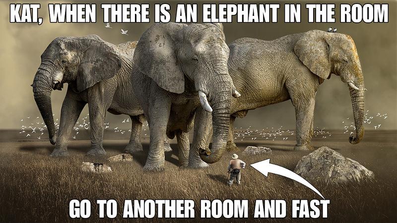 Elephant In the Room.jpg
