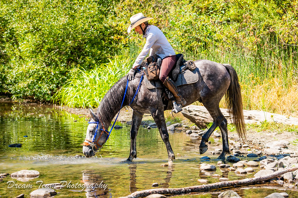 Cuneo Creek 2021 Day 1