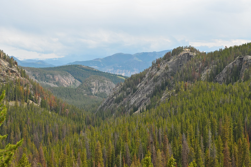 Taken from the Bear Tooth Highway