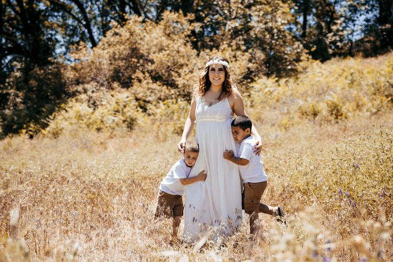 6-4-17 Bristina - Mommy & The Boys-9575.jpg