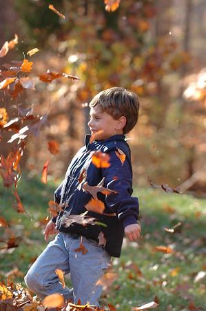 2007-11-24 Leaves