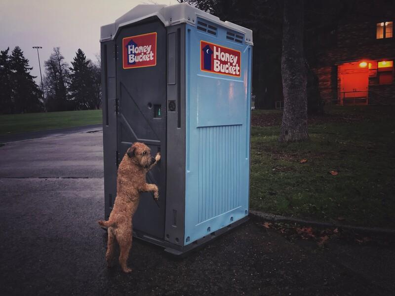 No More Poop Bags