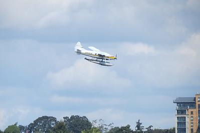 Seaplanes Landing