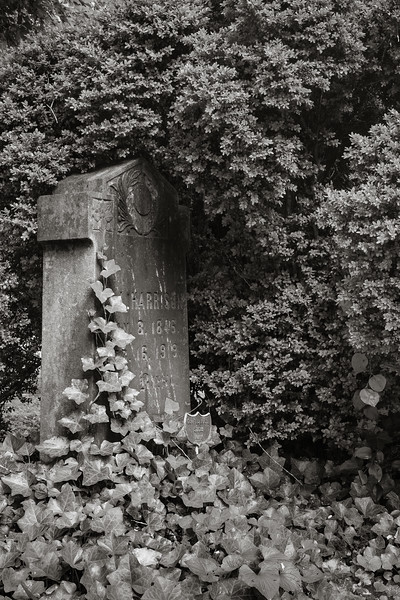 ©2018 Dennis A. Mook; All Rights Reserved; Cemetery Project-018156.jpg