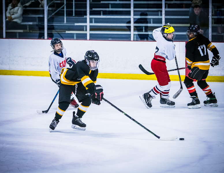 Bruins2-610.jpg