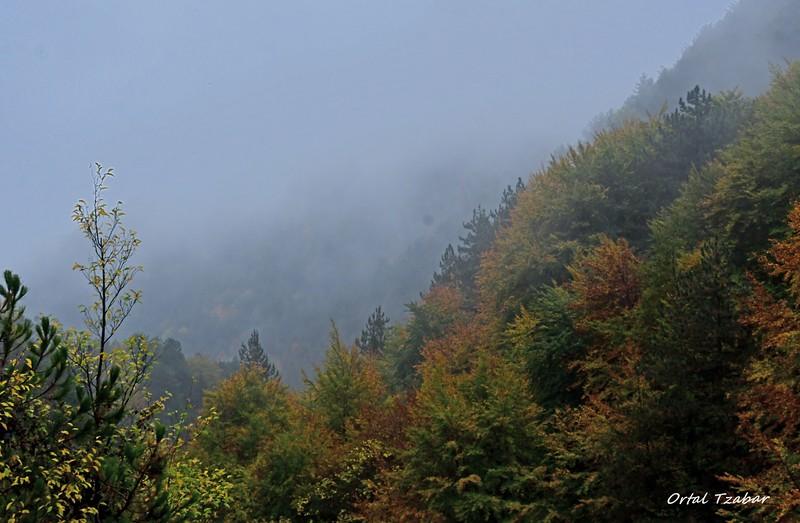 נוף ערפילי מהאולימפוס.jpg