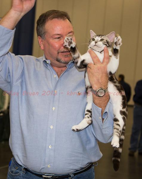 CatShow2014070.JPG