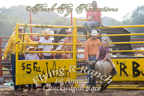 Mutton Busting  Flying R Ranch