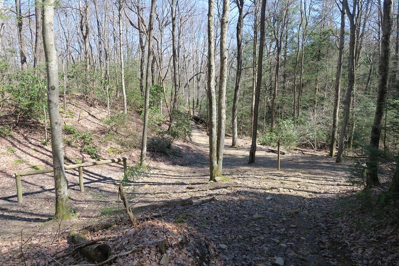 Ridge-Sand Cave Trail Junction - 3,180'