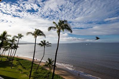 Maui 2014 Landscapes
