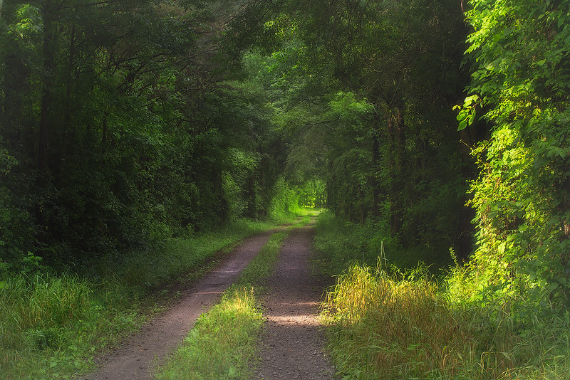 Priceville country road 2 web.jpg