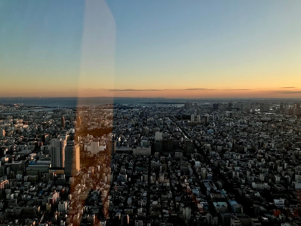 The sky fading pink into a winter sunset over Tokyo.