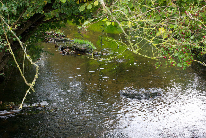 Wellow Brook  at Stoney Littleton