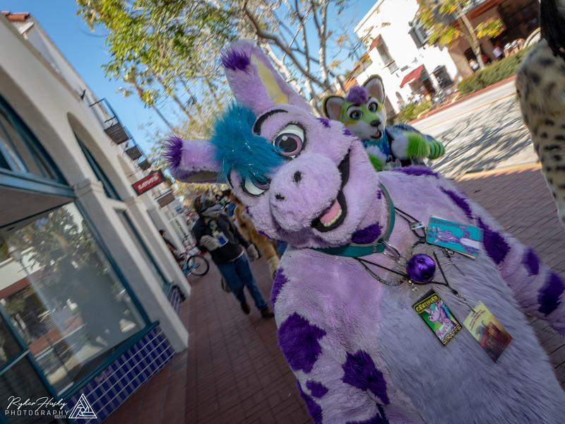 20190316-Santa Barbara Trolley Meetup 2019-3-16-137.jpg