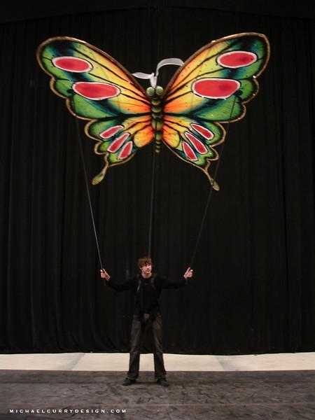 Daniel Flannery Elements Butterfly 1.jpg