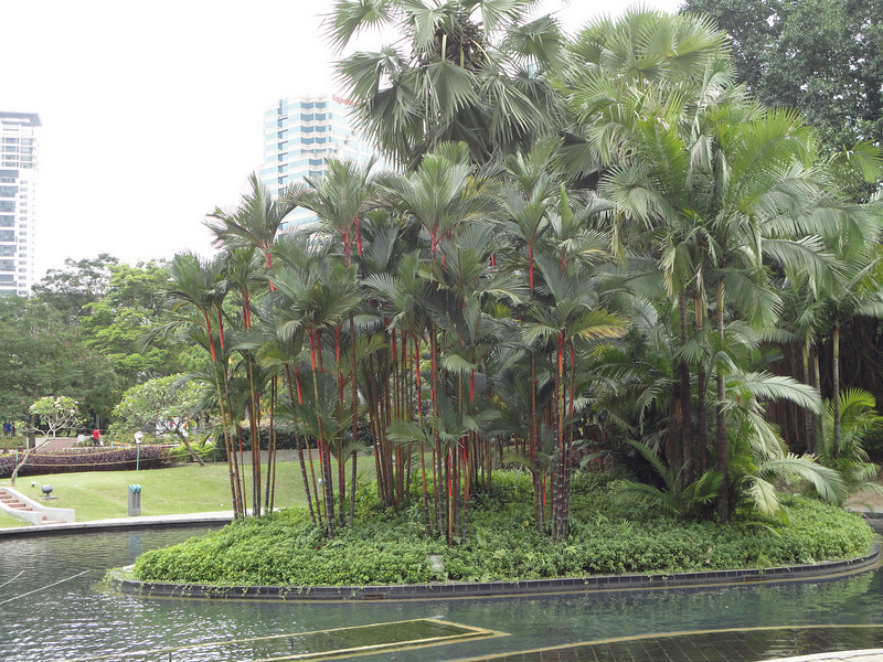 Kuala Lumpur 017.jpg