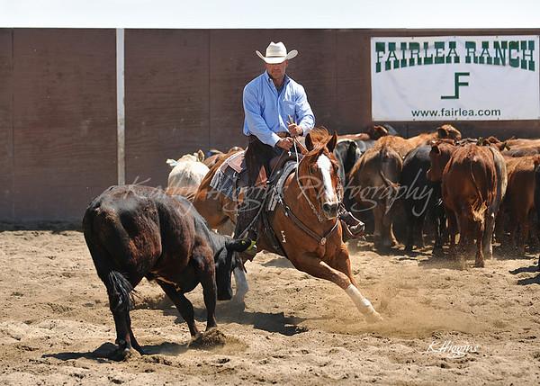 VCHA Derby May 3, 2013 (herd work)