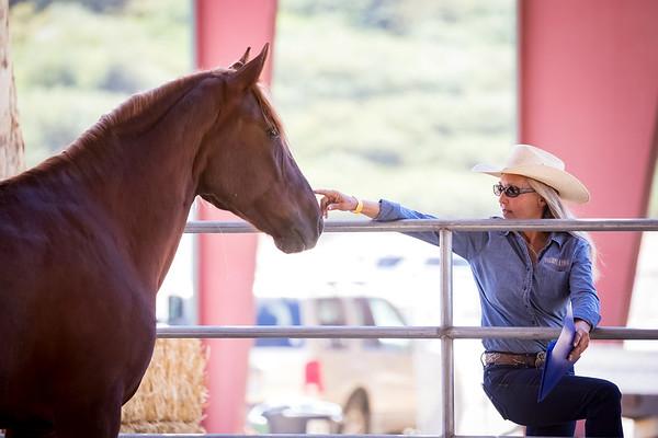 Norco Horse Affair 2017