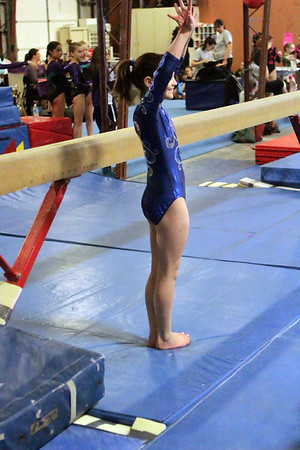 Competitive Edge Gymnastics : Session 3 : Level 6 / IPO