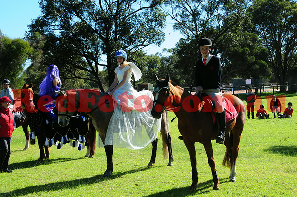 Peel Metro Horse and Pony Club Junior Committee Show