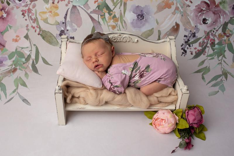 Baby Molly-10.jpg