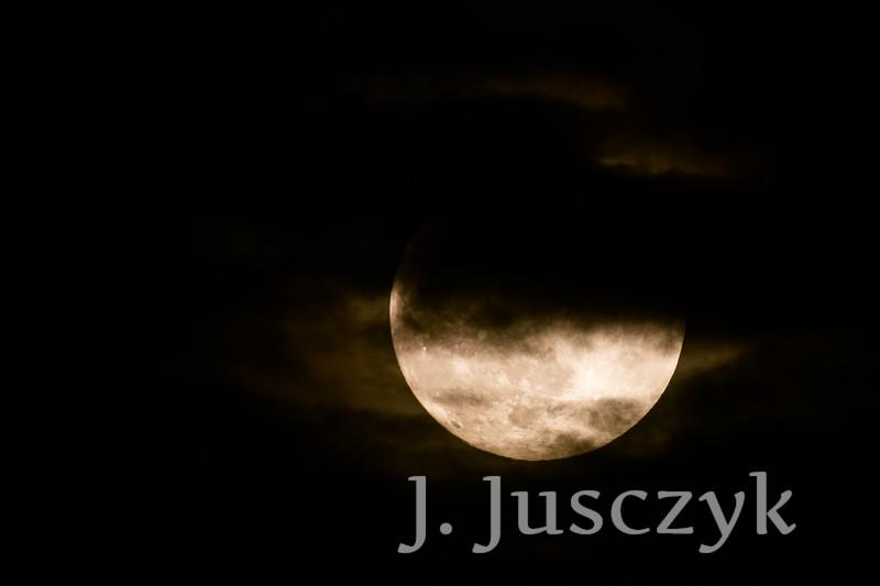 Jusczyk2021-9990.jpg