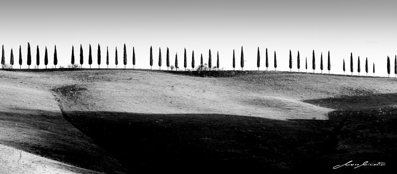 Tuscany-120.jpg
