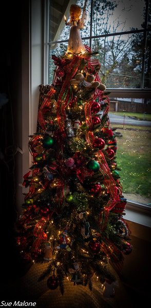 12-12-2019 Sunset House In and Out at Christmas-2.jpg
