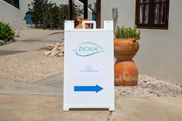 DCNA Activities