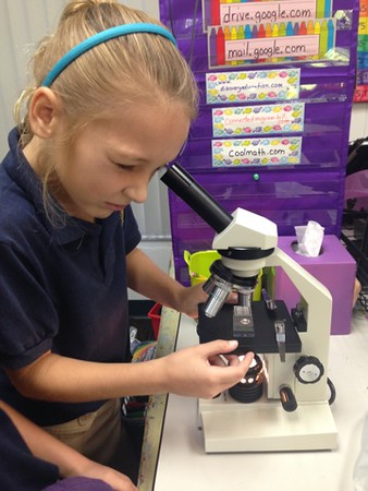 Microscopes and Plants