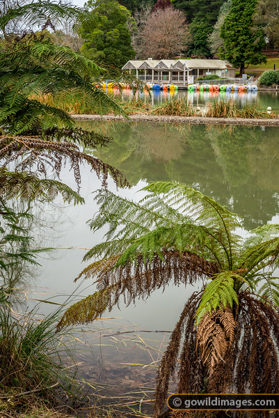 Emerald Lake Park in Winter