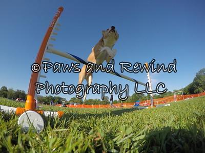 Go Pro Photos