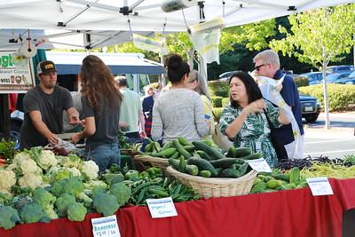 Bellevue Farmers Market 2017