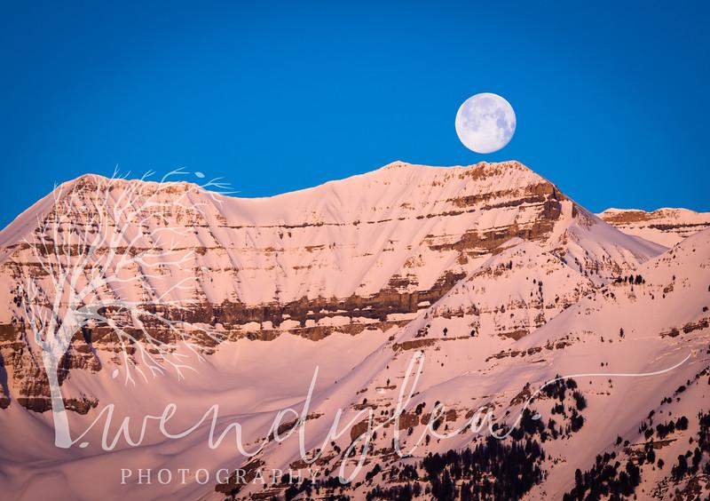 wlc Rainbow Bay Moon and TimpApril 12, 201740-Edit.jpg
