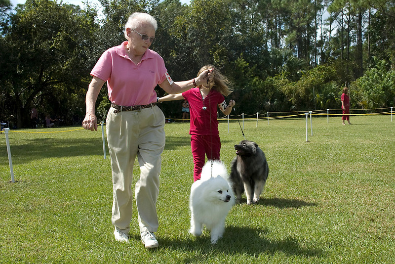 The American Eskimo Dog and Keeshond compete in the Non-Sporting group.
