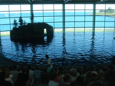 Chicago aquarium