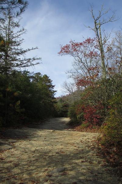 Panthertown Valley Trail - 3,950'