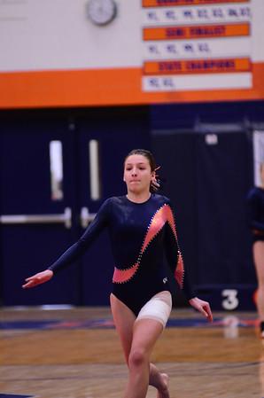 Oswego Girls Gymnastics JV 2012