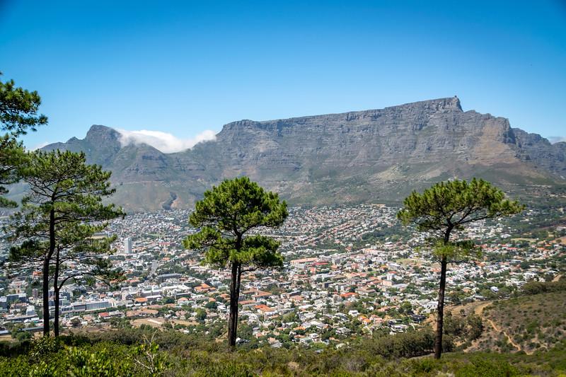 2019-02-09-Zuid-Afrika-2884.jpg