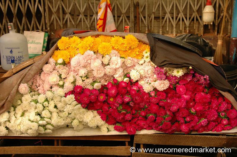 Flower Bundles - Rangoon, Burma (Yangon, Myanmar)