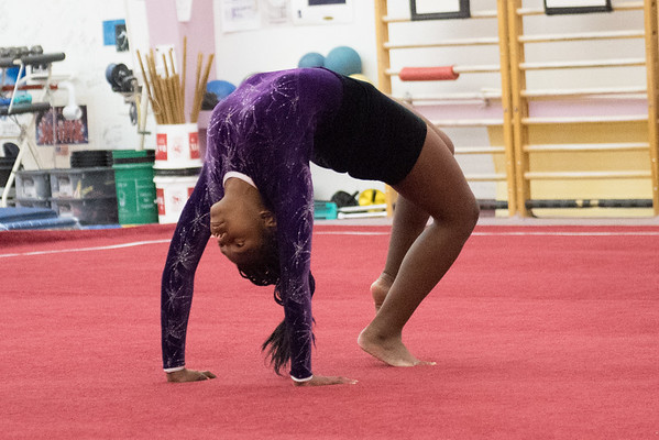 Regional Gymnastics 12-11-2016