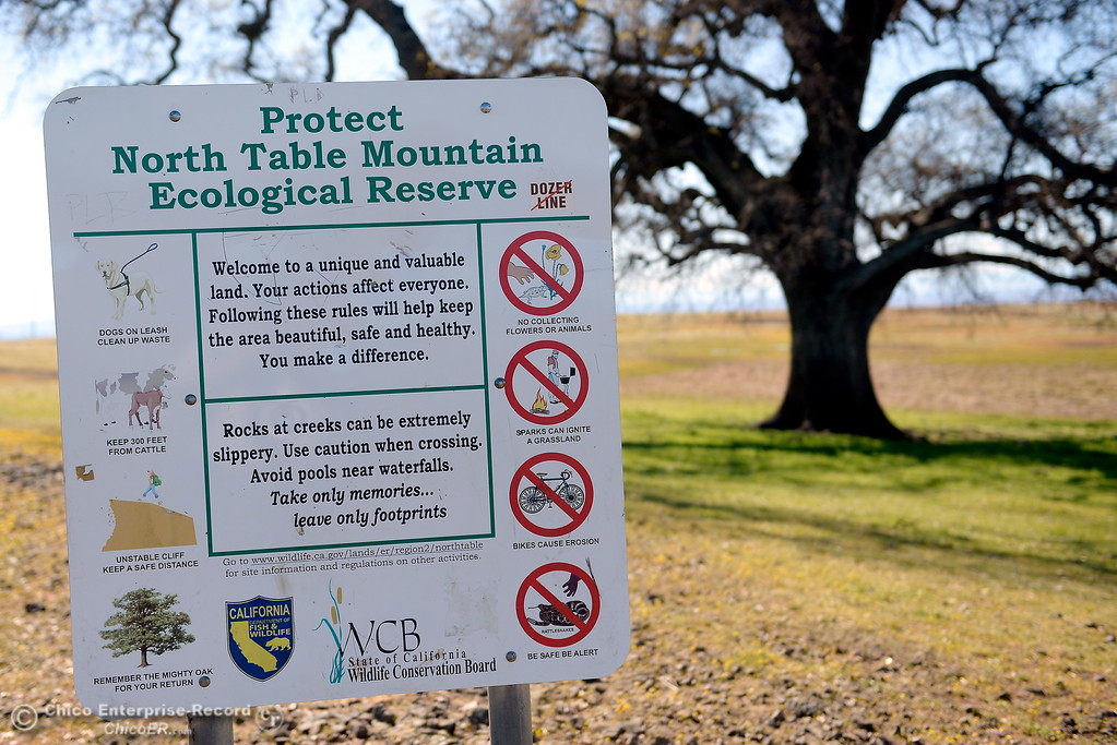 . A sign encouraging hikers to protect the North Table Mountain Ecological Reserve is seen Monday.  The wildflowers are just beginning to bloom on Table Mountain Monday March 5, 2018. Hikers 16-years or older are now required to have a Lands Pass or valid hunting or fishing license. (Bill Husa -- Enterprise-Record)