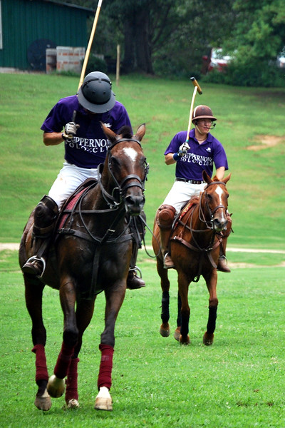 Chukkar Farm Polo - June 26, 2011