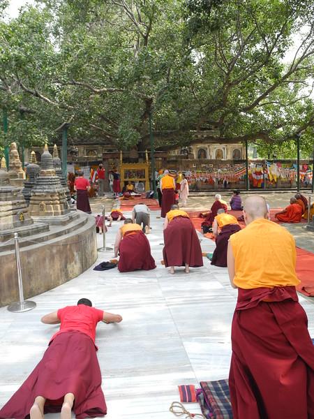india&nepal2011 280.jpg