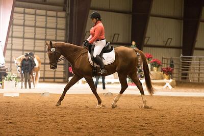 Horse 628