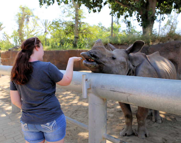 IMG_0151_SD ZOO_CKS_8.10.17_Taylor and Rhino.jpg