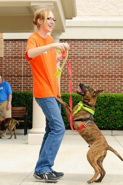 20110514 PetSmart Adoption Event-46.jpg