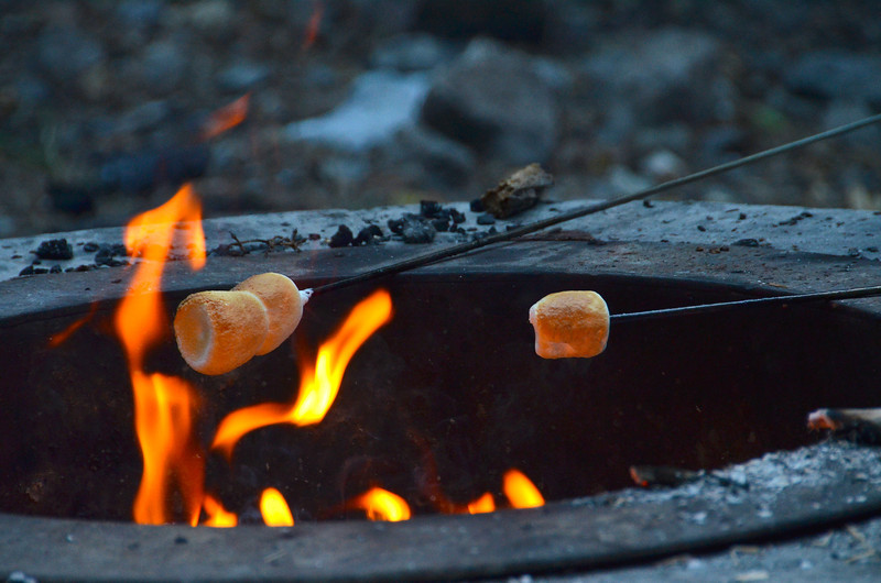 2012-8-2 ––– We went up American Fork canyon with Jessica, Chris and Aili for an evening picnic. We roasted hot dogs and then marshmallows. I shot this image as some of the marshmallows were reaching near perfection. I ate way too many.