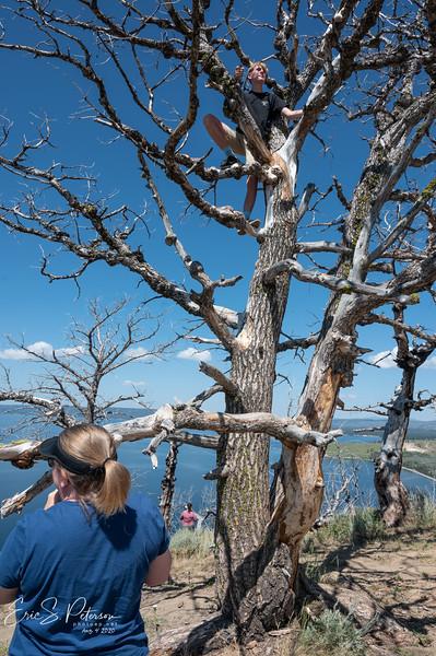 Yellowstone-20200804-8480.jpg